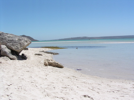 B&B Langebaan Flower Season